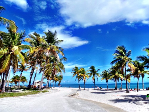 Crandon Park Beach on Key Biscayne. Source: Kara Franker