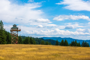 Fire Lookout-18
