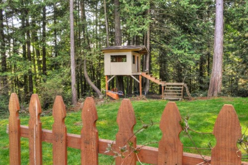 Backyard Treehouse Builders : Tips for Building Your Own Backyard Treehouse  Zillow Porchlight