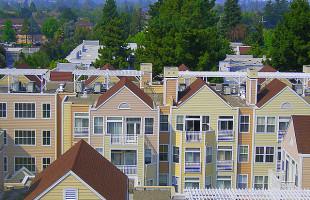 2015 rental forecast